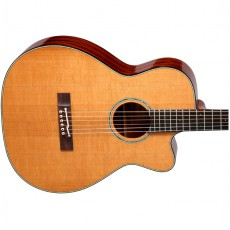 Takamine EF740FSTT Thermal Top Semi Acoustic - Natural