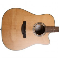 Takamine GD20CE-NS Semi Acoustic - Natural
