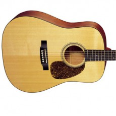 Martin D-16GT Acoustic - Natural (Includes Case)