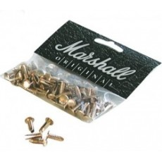 Marshall Gold Rivets (x100)
