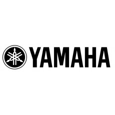 Premium Yamaha Delivery Service: Dublin City